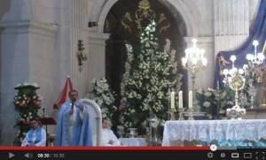 Homilía del vicario (parte II)